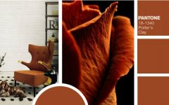 Trendies Modern Chairs For Fall According To Pantone Color Report modern chairs Trendiest Modern Chairs For Fall According To Pantone Color Report Trendies Modern Chairs For Fall According To Pantone Color Report 7 240x150