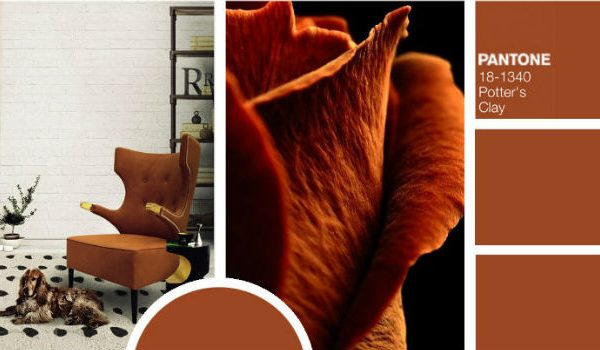Trendies Modern Chairs For Fall According To Pantone Color Report modern chairs Trendiest Modern Chairs For Fall According To Pantone Color Report Trendies Modern Chairs For Fall According To Pantone Color Report 7 600x350